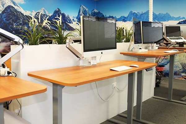 corporate health and wellness initiatives in the workplace standup desks