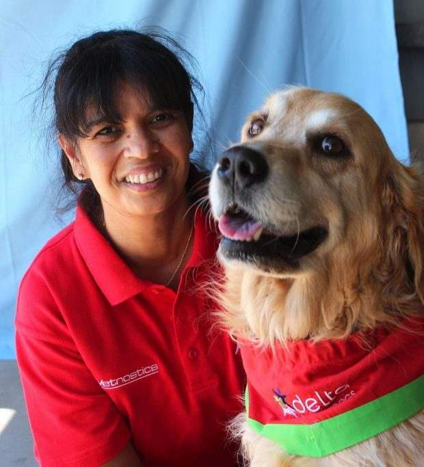 corporate health and wellness initiatives in the workplace therapy dogs